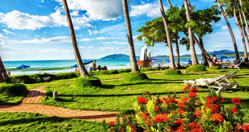 Reconnect with nature as you enjoy the lush and green vegetation in Tamarindo, Costa Rica.